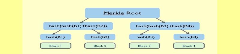 Merkle Roots et Merkle Trees expliqués.